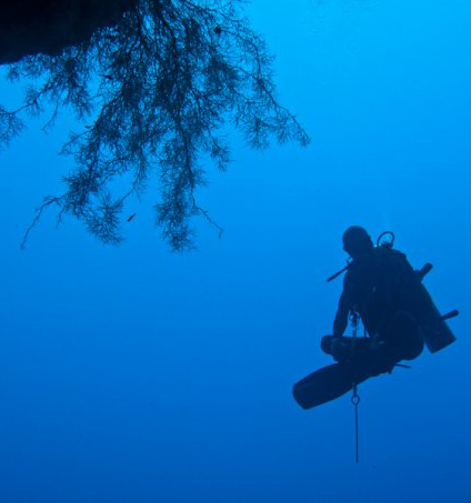 Peak Performance Buoyancy diving Cebu, Philippines