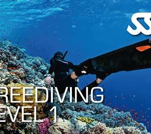 Freediving Level 1 Course at Kasai Village dive Centre